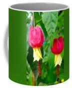 Trailing Abutilon Or Lantern  Flower Coffee Mug