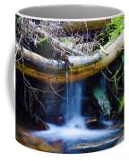 Tranquil Falls Coffee Mug