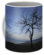 Tranquil Coffee Mug by Terry DeLuco