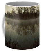 Tranquility Lake Coffee Mug by Doug Sturgess