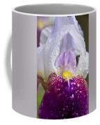 Translucent Coffee Mug