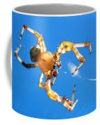 Trapeze Spider Coffee Mug by Christina Rollo