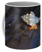 Traveling At A Snail's Pace Coffee Mug