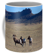 Traveling Band Coffee Mug