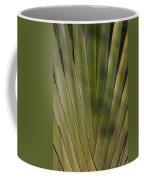 Traveller's Palm Patterns Dthb1542 Coffee Mug