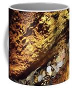 Treasure Bark 4 Coffee Mug