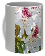 Tree Blossom Coffee Mug