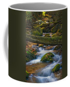 Tree Bridge In The Smokies Coffee Mug