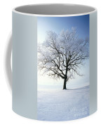 Tree Covered In Hoar Frost Coffee Mug