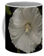 Tree Flower Coffee Mug