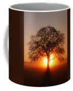 Tree Fog Sunrise Coffee Mug