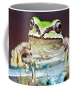 Tree Frog Coffee Mug by Jean Noren