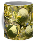 Tree Fruit Coffee Mug