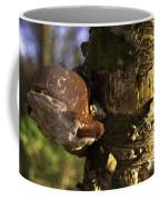 Tree Fungus  Coffee Mug