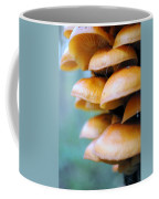 Tree Growth Coffee Mug
