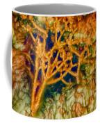 Tree In A Park Hot Springs Coffee Mug