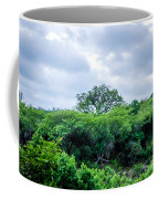 Marula Tree In African Sky Coffee Mug
