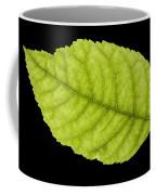 Tree Leaf Coffee Mug