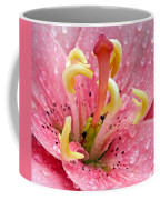Tree Lily Upclose With Ant Coffee Mug