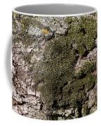 Tree Moss Coffee Mug