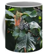 Tree Nymph On Blossom Coffee Mug