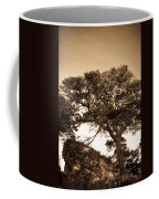 Tree Of Life In Sepia Coffee Mug
