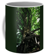 Tree On Pierce Stocking Scenic Drive Coffee Mug by Michelle Calkins
