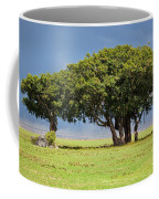 Tree On Savannah. Ngorongoro In Tanzania Coffee Mug