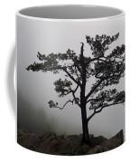 Tree On The Blue Ridge Parkway Coffee Mug