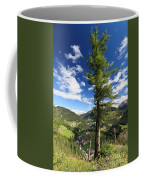 tree over Cordevole valley Coffee Mug