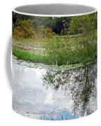Tree Reflecting In Pond Coffee Mug