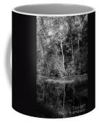 Tree Reflection In Chesapeake And Ohio Canal Coffee Mug