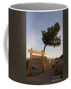 Tree Rock Wyoming Coffee Mug