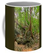 Tree Roots On Rock Coffee Mug
