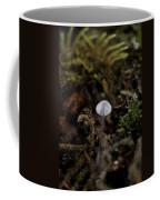 Tree 'shroom Coffee Mug