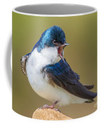 Tree Swallow Squawking Coffee Mug