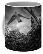 Tree Swallows In Nest Coffee Mug