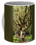 Tree Trunk And Limbs Coffee Mug