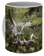 Tree Trunk In The Meadow Coffee Mug
