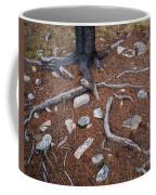 Tree Trunk Roots And Rocks Coffee Mug
