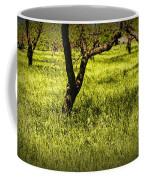 Tree Trunks In A Peach Orchard Coffee Mug