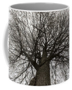 Tree Web Coffee Mug