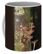 Tree With A Fungus Coffee Mug