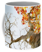 Tree With Half Of The Leaves Missing Coffee Mug
