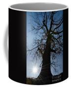 Tree With Sun Coffee Mug