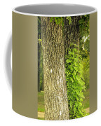Trees At My Window Coffee Mug