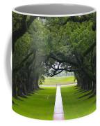 Trees At Oak Alley Plantation Coffee Mug