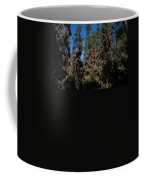 Trees Covered With Monarch Butterflies Coffee Mug