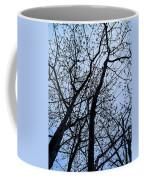 Trees From Below Coffee Mug