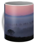 Trees In Fog At Sunrise Coffee Mug